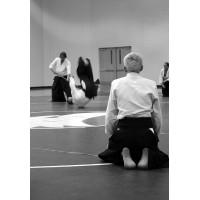 Aikido Enfants